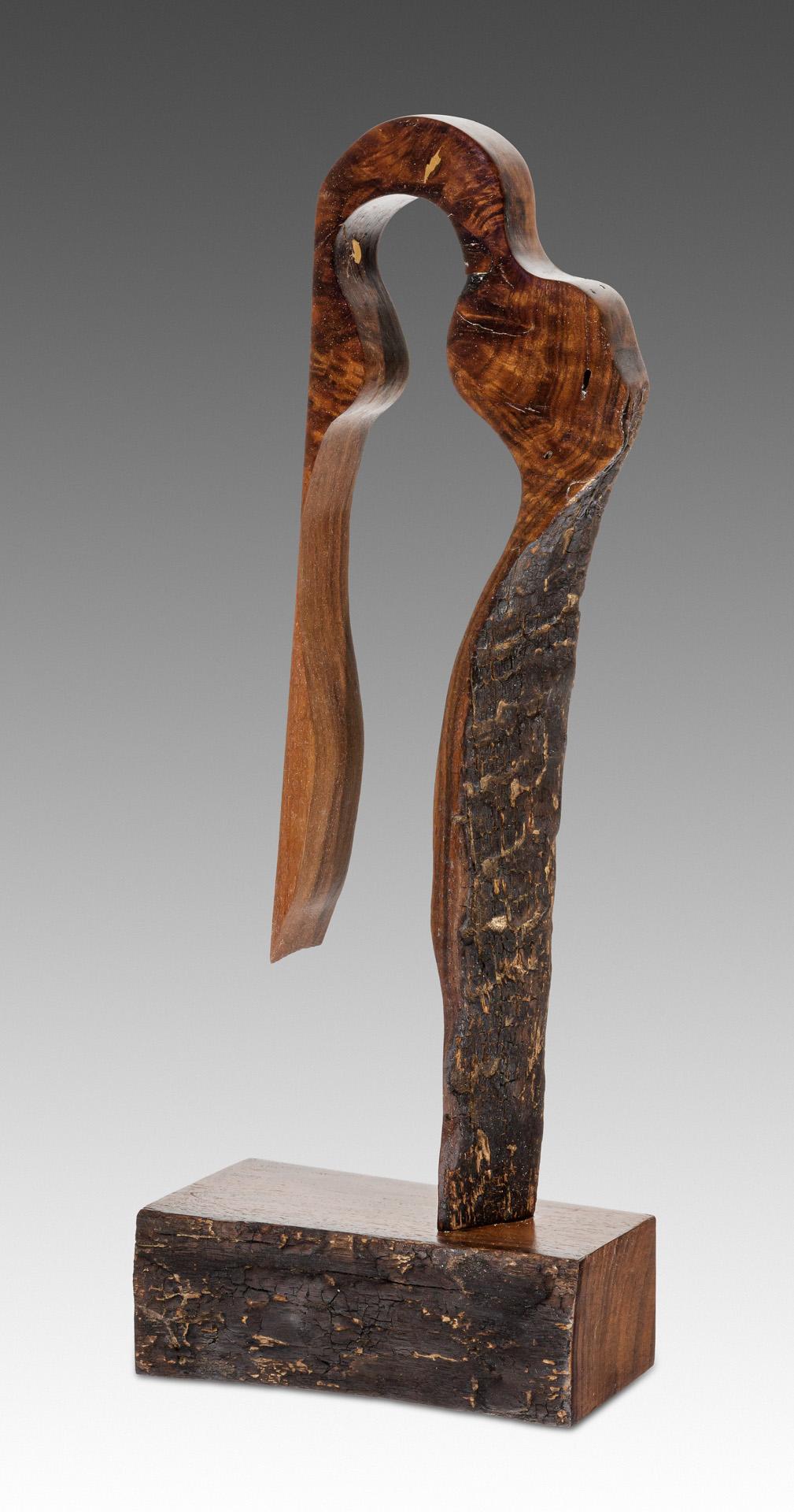 The Looker-sculpture copyright Scott Bruckner